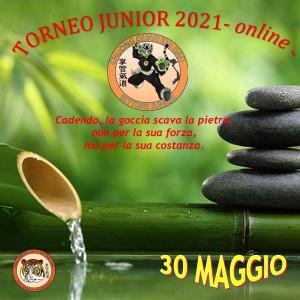 IMG_20210515_113106_755