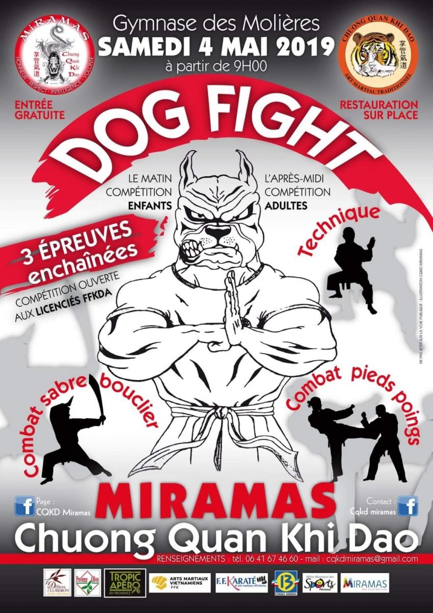 dogfight_01
